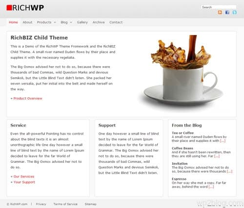 RichBIZ Premium WordPress Child Theme