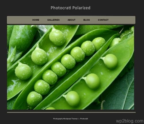 Photocrati Polarized wordpress theme
