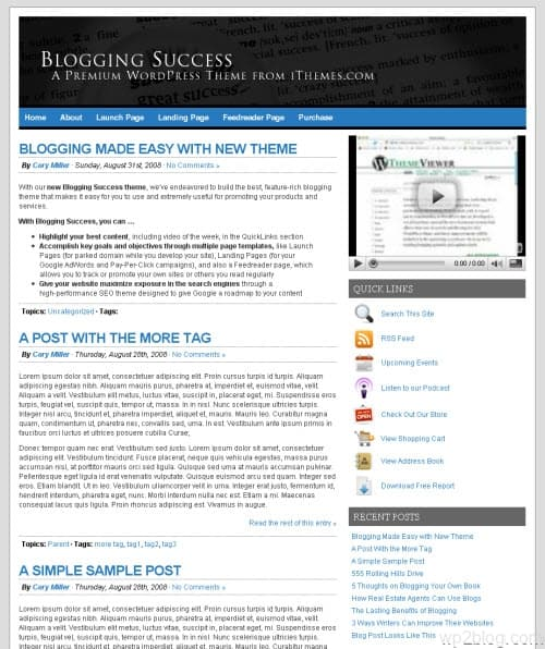 Blogging Succss Theme