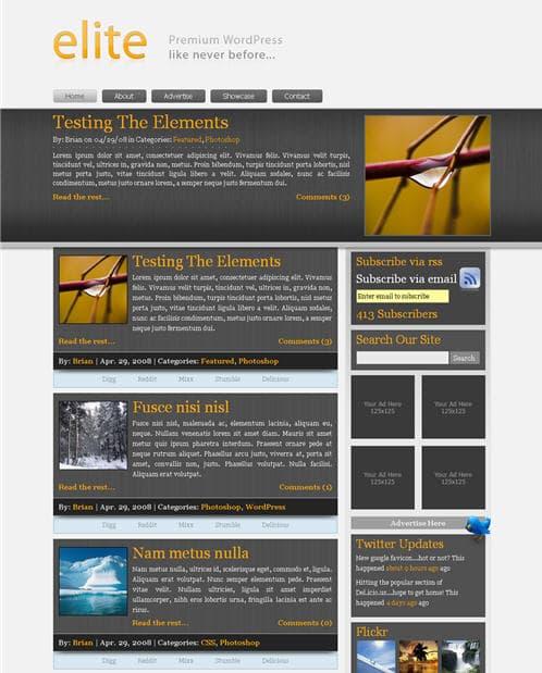 Elite Premium WordPress Theme