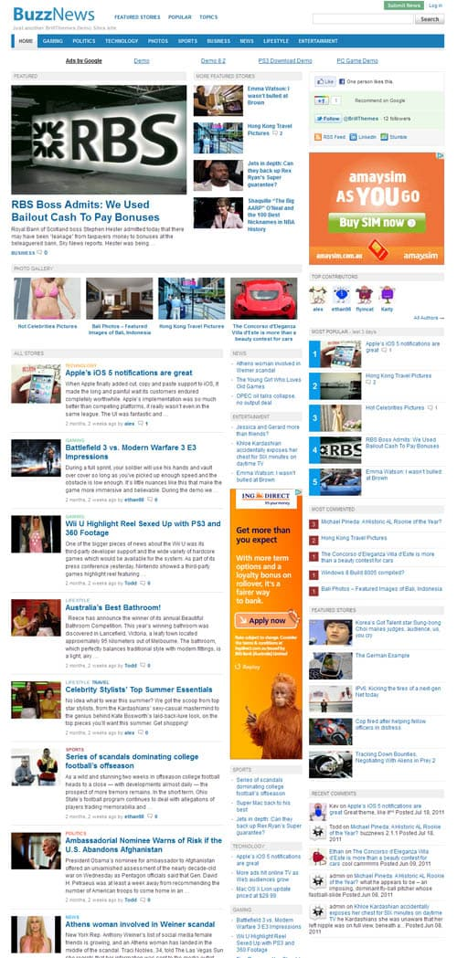 buzznews-wordpress-theme