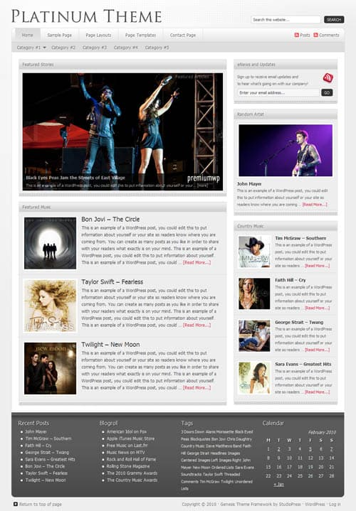 platinum-wordpress-theme
