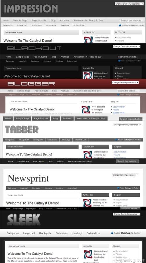 Catalyst WordPress Theme Skins