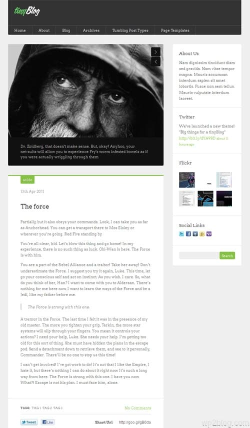 Tiny Blog Premium WordPress Theme