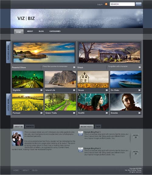 Viz Biz WordPress Theme