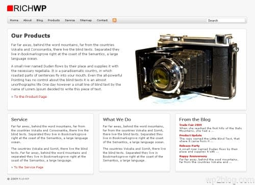 Rich Biz WordPress Theme Version
