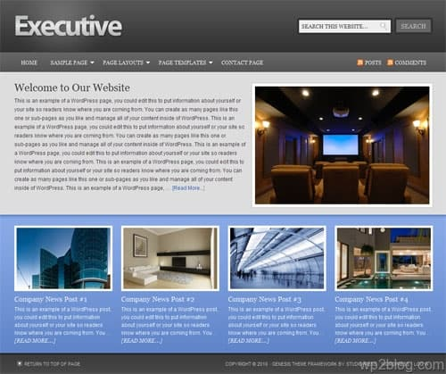 executive child theme