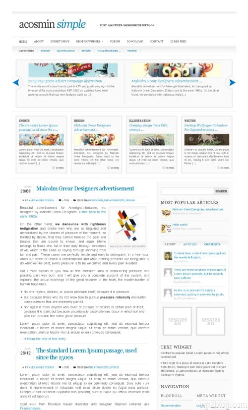 Acosmin Simple WordPress Theme