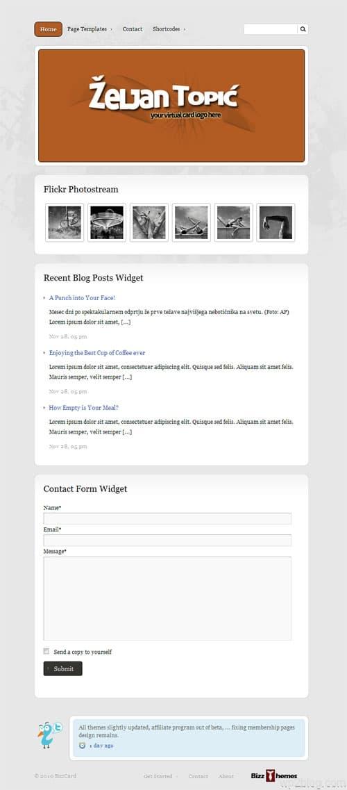 BizzCard Premium WordPress Theme
