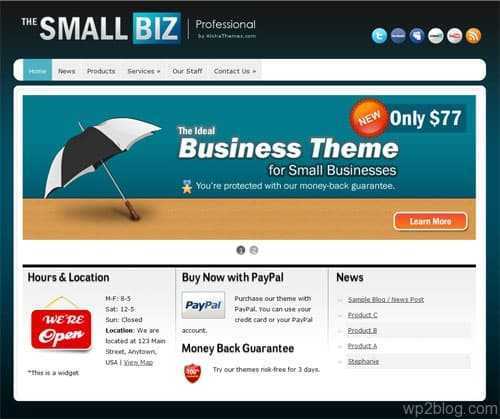 small bizz wordpress theme