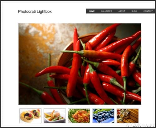 Photocrati Lightbox wordpress theme