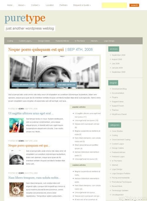 puretype wordpress theme
