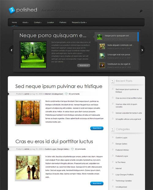 polished-wordpress-theme