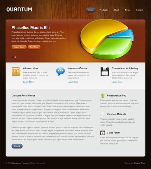 quantum-wordpress-theme