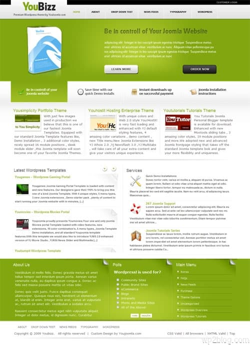 youbizz wordpress theme