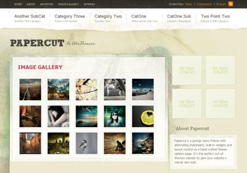 Paper cut premium wordpress theme
