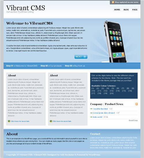 Vibrant CMS WordPress Theme