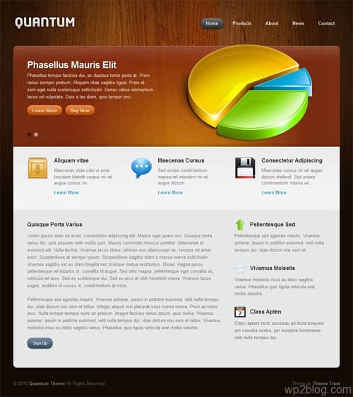 quantum wordpress theme