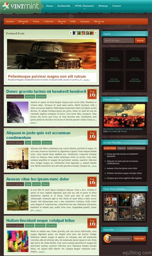 wintmint wordpress theme