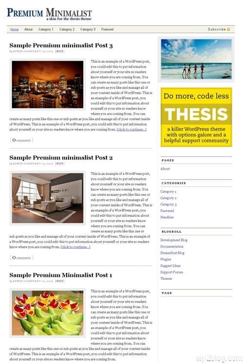 premium minimalist theme