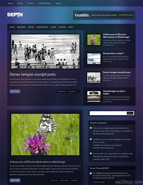 depth wordpress theme