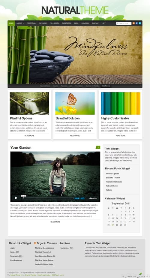 Natural Premium WordPress Theme
