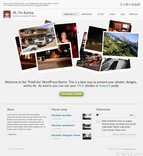 polafolio wordpress theme