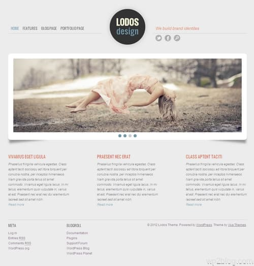 Lodos WordPress Theme