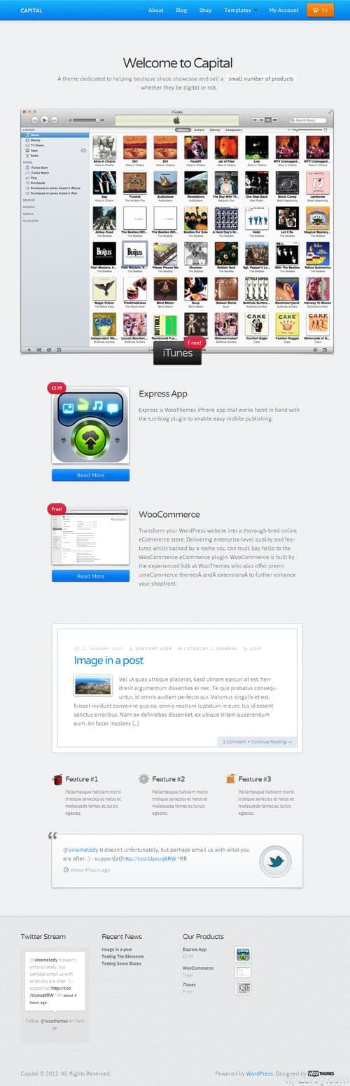Capital WooCommerce Theme