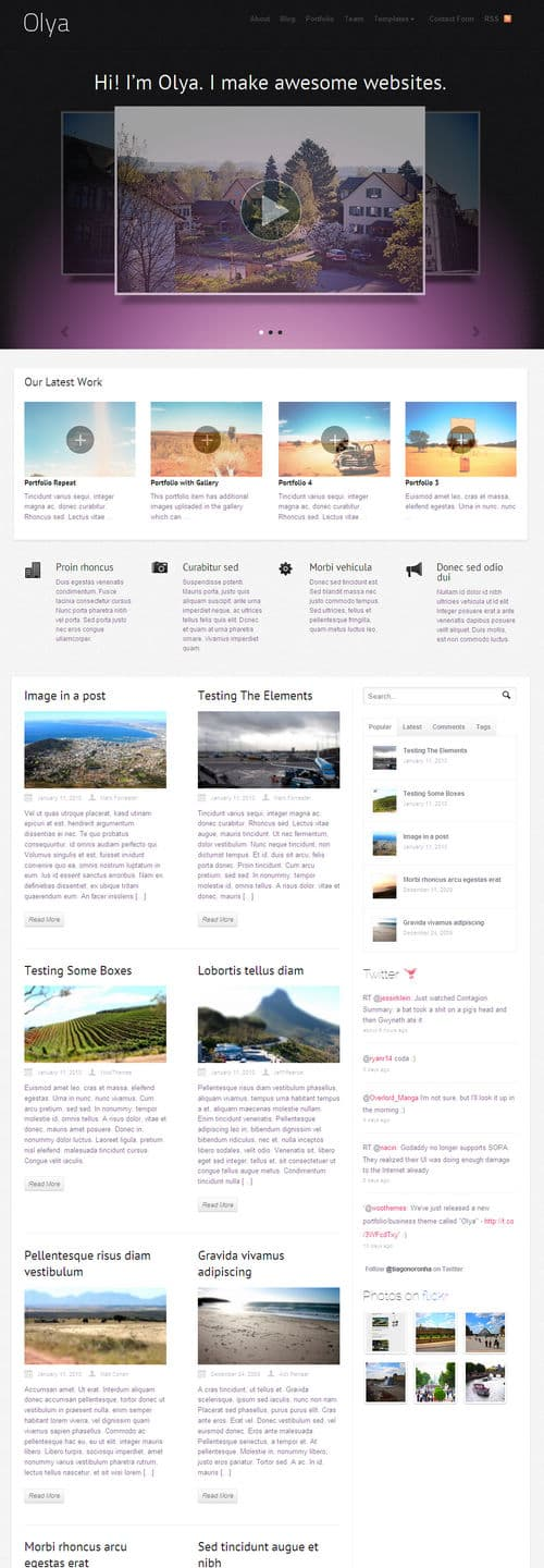olya wordpress theme