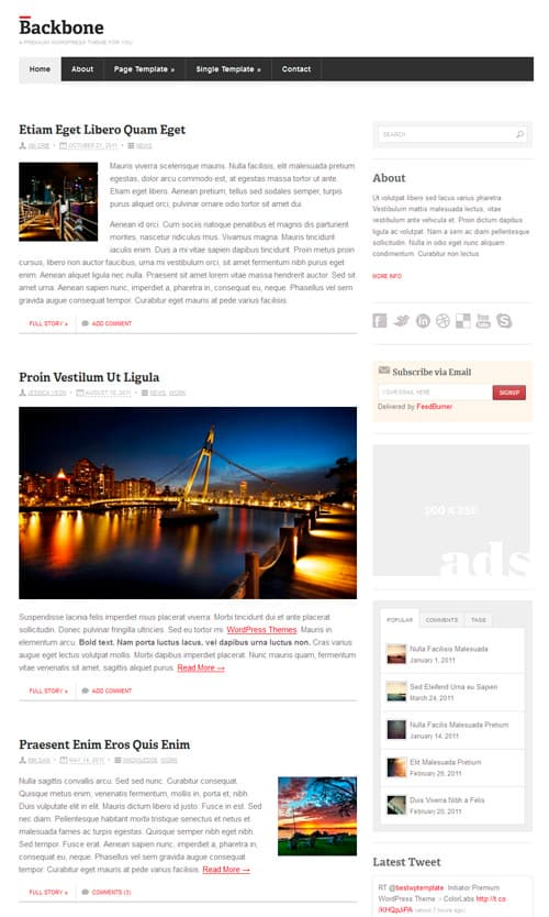 backbone wordpress theme