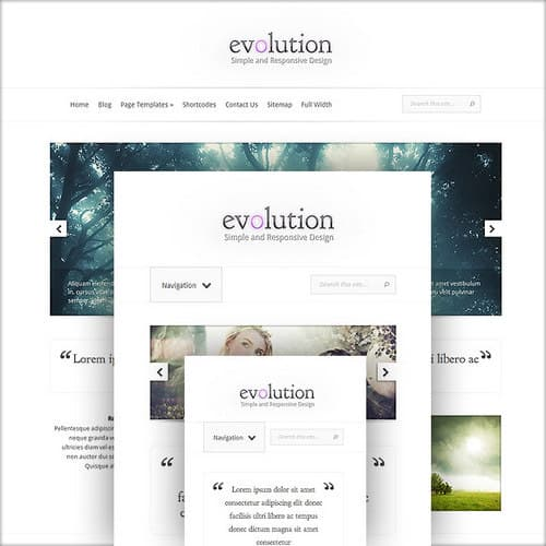 Evolution Responsive Layout