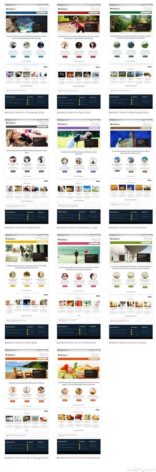 Blackbird Theme Multiple Examples