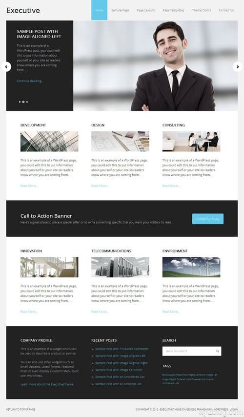 Executive 2.0 WordPress Theme