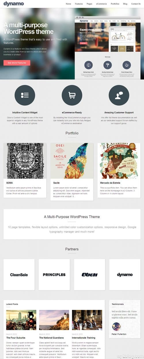 Dynamo WordPress Theme