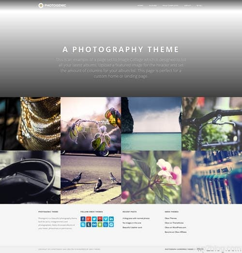 Photogenic WordPress Theme