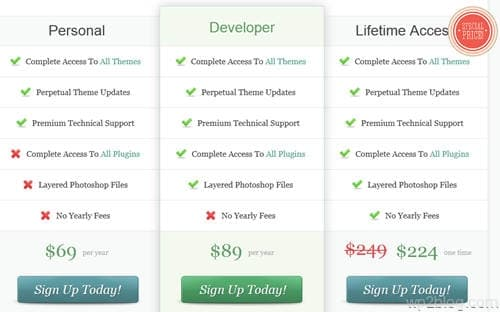 elegant themes lifetime license discount