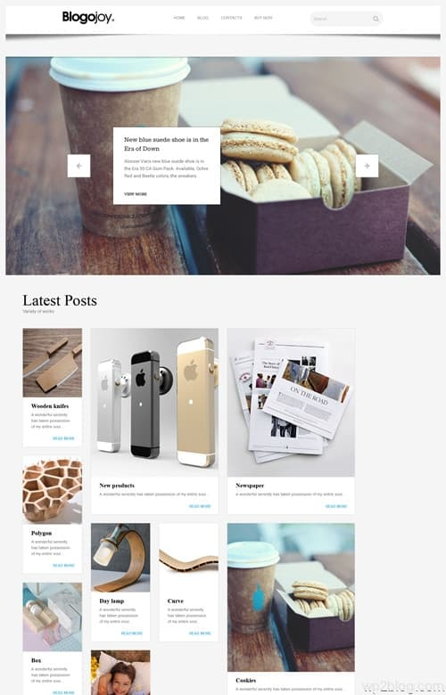 Blogojoy WordPress Theme