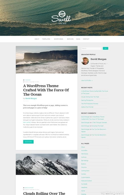 Organic Swell WordPress Theme