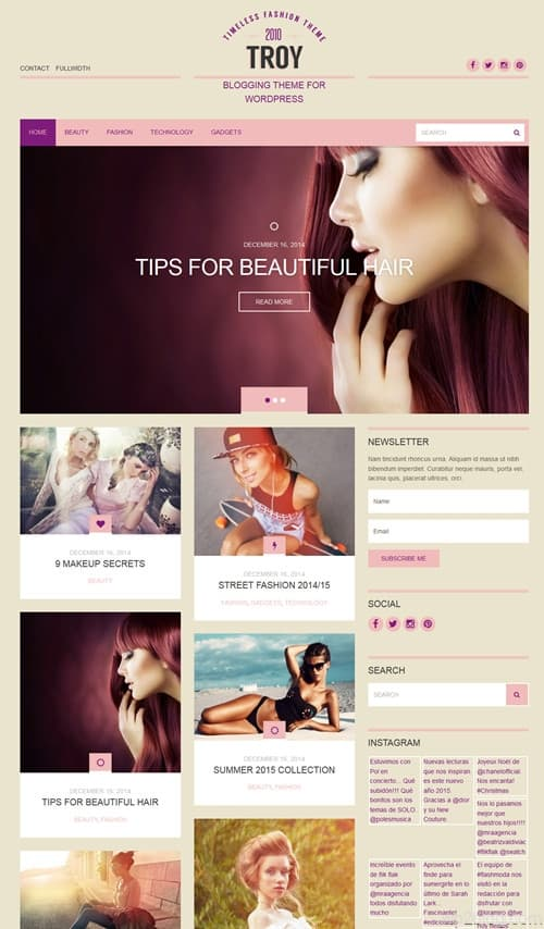 Troy WordPress Theme