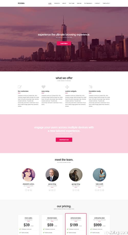 Roxima WordPress Theme