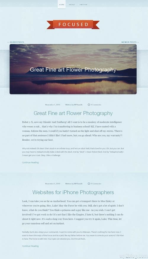 focused wordpress theme