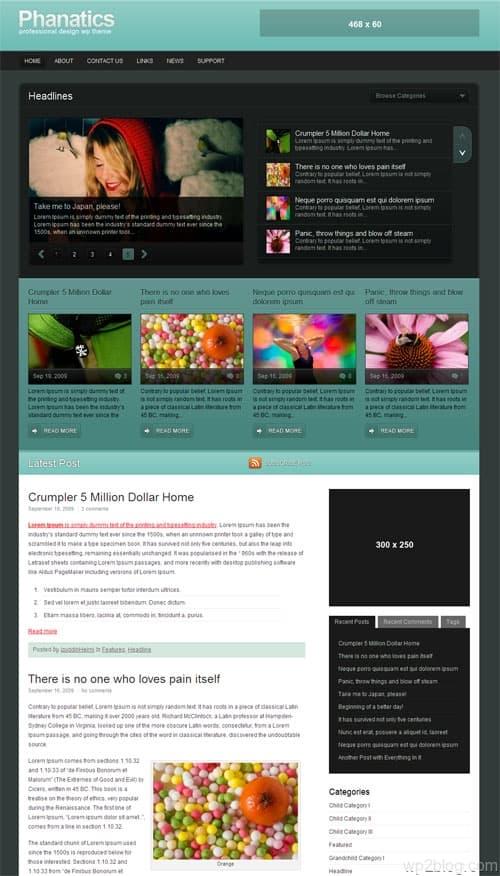 Phanatics Premium WordPress Theme