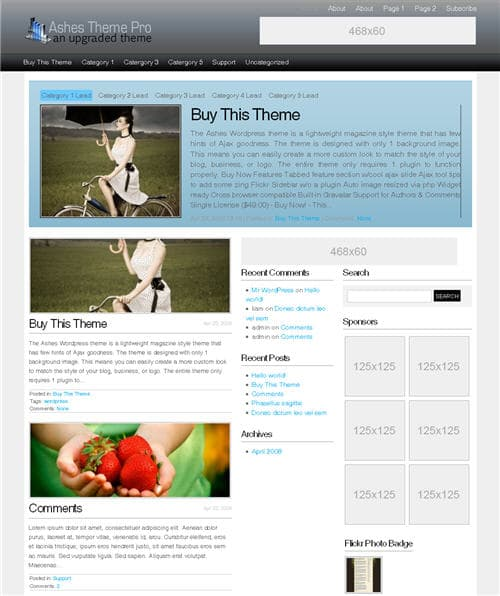 Ashes Pro WordPress Theme