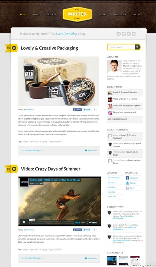 Writer Premium WordPress Theme