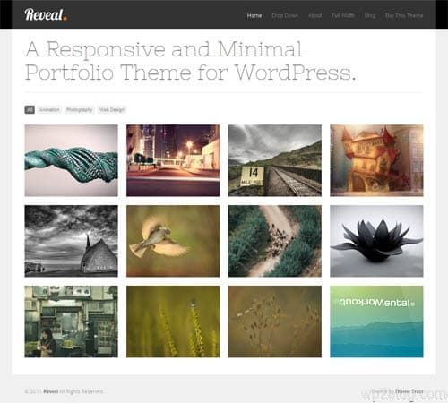 reveal wordpress theme