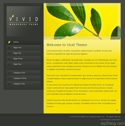 vivid wordpress theme