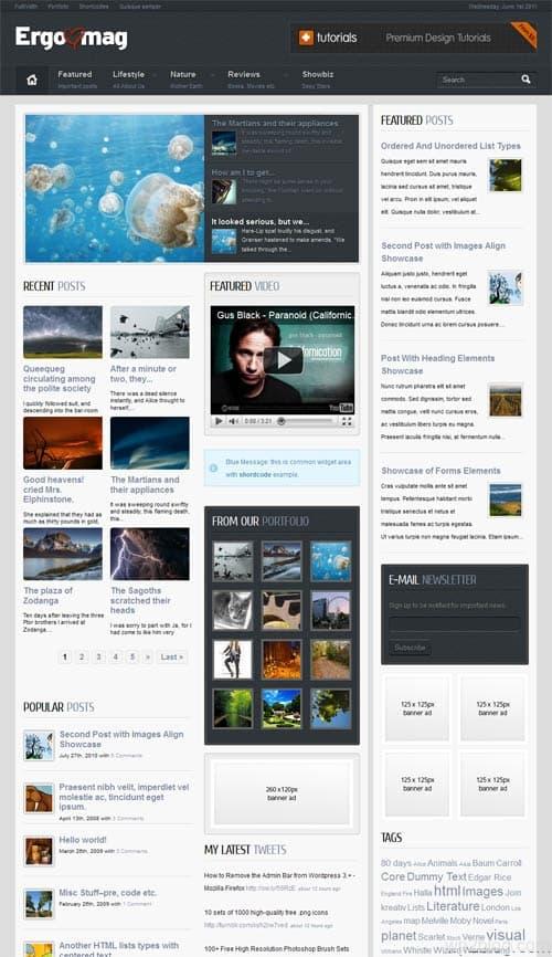 Ergomag WordPress Magazine Theme