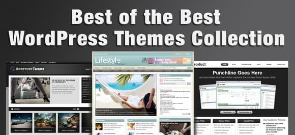 best of the best wordpress themes