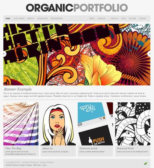 portfolio-theme1